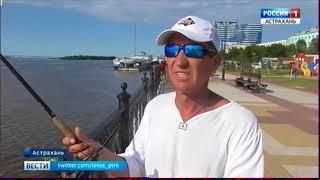 Впереди жителей Астраханской области ждет несколько выходных дней