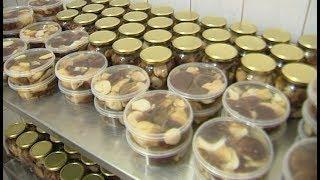 В Кондинском районе производят самые экологически чистые северные деликатесы