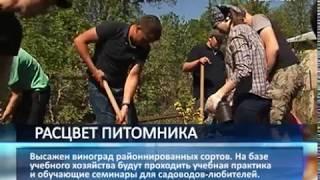 В Самарской сельхозакадемии возродили вузовский питомник