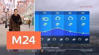 """""""Утро"""": теплая погода ожидается в столичном регионе 22 ноября - Москва 24"""