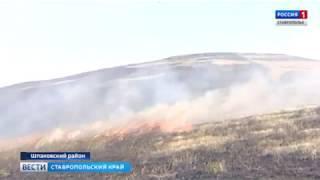 Названы первые версии пожара на ставропольских полях