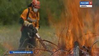 В Красноярском крае тушат лесные пожары при помощи спецтехники и авиации
