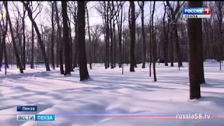 Весна в Пензенской области началась с аномальных холодов