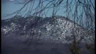 Под защитой ЮНЕСКО. Международные наблюдатели возьмут под охрану заповедники Челябинской области
