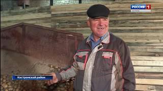 """Десятки фермеров нашей области уже получили """"костромской гектар"""" для сельхозпроизводства"""