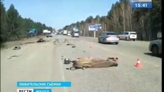 Мотоциклист погиб в ДТП на Качугском тракте