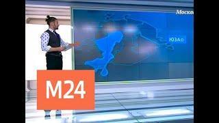 """""""Климат-контроль"""": какая погода ожидает москвичей в начале декабря - Москва 24"""