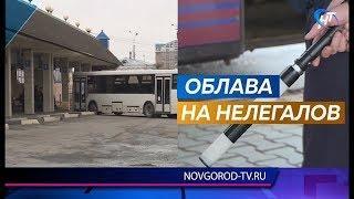 В Новгородской области активно ловят нелегальных перевозчиков