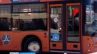 После матчей общественный транспорт в Калининграде будет ходить до часа ночи