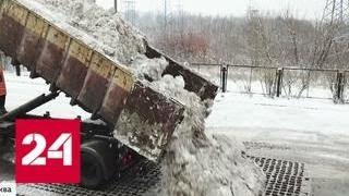 Выпавший в Москве снег не растает до весны - Россия 24