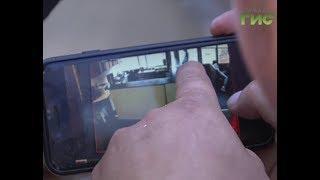 В Самаре обсуждают скандальное видео, на котором крысы пожирают шаурму