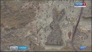Вблизи Петрозаводска появится новый арт-объект