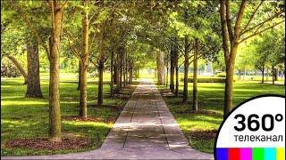 В Опалихе появится первый городской парк благодаря «Сити‐XXI век»