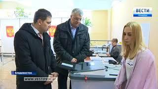 Выборы во Владивостоке организованы по-европейски - международный наблюдатель