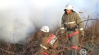 24 природных пожаров зафиксированы в ЕАО (РИА Биробиджан)