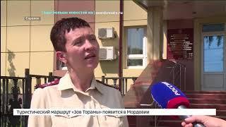 Медики предупреждают в Мордовии в самом разгаре сезон «мышиной» лихорадки