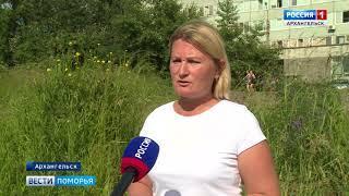 Грядущие выходные порадуют жителей Архангельской области сухой и тёплой погодой