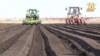 560 тысяч гектаров посевных площадей под урожай предусмотрено в этом году в Чувашии