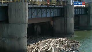 Новосибирская ГЭС приступила к сбросу плавающей древесины в Обь