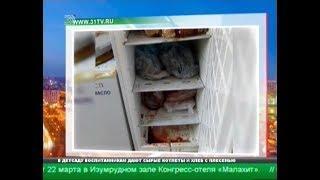 Ужасы в детской столовой. Чем кормят дошколят в Челябинске?
