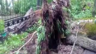 Последствия урагана 30 мая. Светлоярское озеро