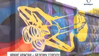 На граффити белгородский художник затратил более 250 баллончиков с краской