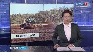 В Костомукше будут добывать топливный торф