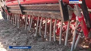 В Костромской области активно идет яровой сев