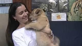 Осенний бэби-бум в Ростовском зоопарке: о львенке, игрунках и маленькой ламе