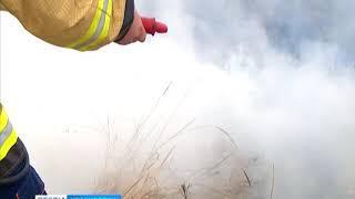 В Канском районе сгорело 4 квадратных километра травы