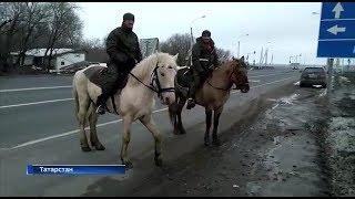 Два жителя Башкирии отправились в хадж на лошадях
