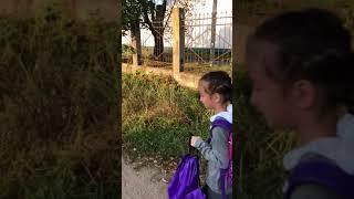 Опасная дорога в школу в Твери, часть 1