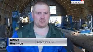Лесопереработчики из посёлка Тотомица в Нейском районе выходят на международный уровень