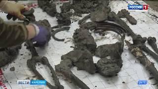 Поисковая экспедиция «Вахта Памяти»