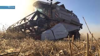 Полную инвентаризацию земель сельхоз назначения планируют провести в области