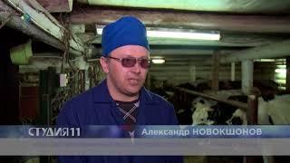 Портрет сельского Айболита. Студия 11. 30.05.18