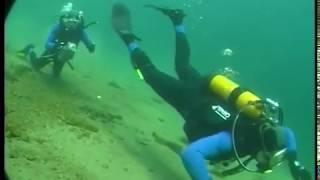 Подводный мир Михаила Развожаева