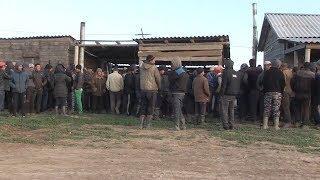 В Николаевском районе прошел рейд по выявлению нелегальных мигрантов