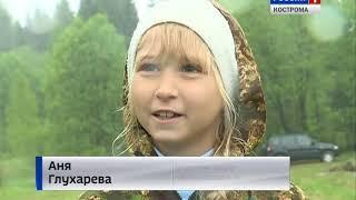 Костромские леса пополнились 12 тысячами молодых ёлочек
