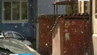 Красноярск заполонил тополиный пух