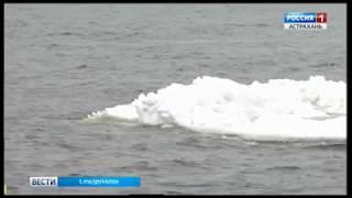 """В Каспийском море появились """"айсберги"""""""