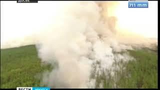 Почти 30 тысяч гектаров тайги горит в Катангском районе из за гроз
