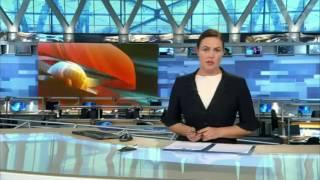 Ведущая Первого канала назвала участников расправы над медведем «уродами»