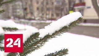 Москву ждет потепление и скачок атмосферного давления - Россия 24