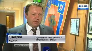 Несколько месяцев может понадобиться на дезинфекцию птицефабрики в  Надеждинском районе