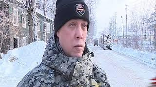 Борьба с черными лесорубами продолжается в Ярославской области