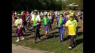 Региональный фестиваль скандинавской ходьбы завершился в Самаре