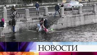 В Санкт-Петербурге обсуждают историю, которая едва не закончилась трагедией.