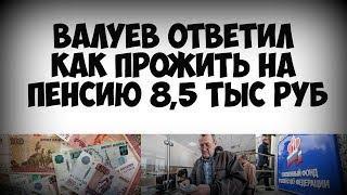 Валуев ответил как прожить на пенсию 8,5 тыс рублей