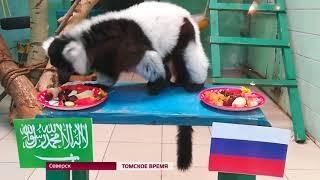 В Томске открыли фан-зону чемпионата мира по футболу